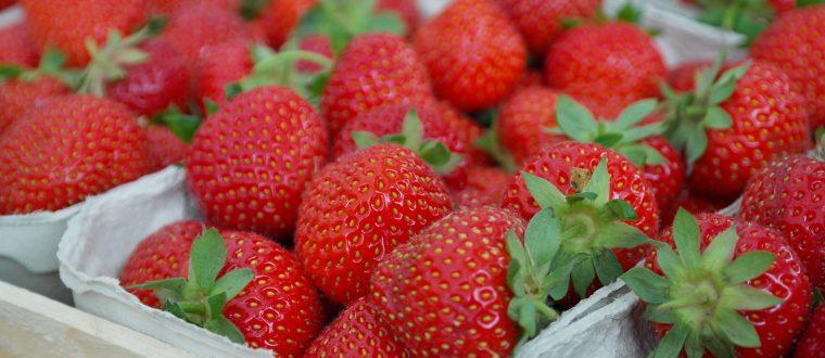תותים: סגולות ויתרונות